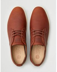 American Eagle Brown Clae Ellington Leather Sneaker for men