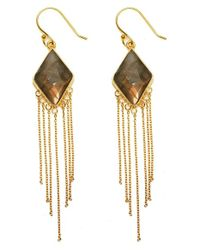 Argento Vivo Metallic Stone Fringe Drop Earrings