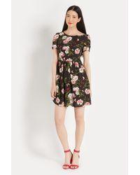 Oasis - Multicolor Rose Print Skater Dress - Lyst
