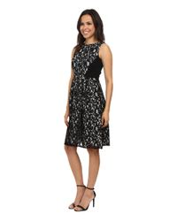 Calvin Klein Lace Fit Amp Flare Dress In Black Lyst