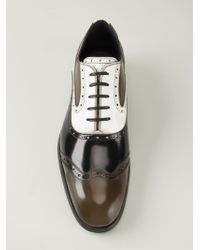 Dolce & Gabbana - Brown 'Rome' Brogues - Lyst