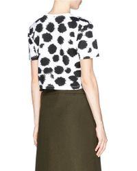 Être Cécile - Black Colourblock Stripe Cheetah Print T-Shirt - Lyst