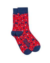 Hobbs | Blue Poppy Sock | Lyst