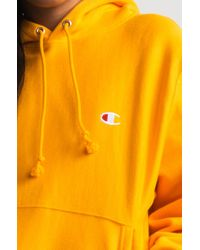 Champion Multicolor Reverse Weave Pullover Hoodie