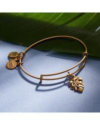 ALEX AND ANI Metallic Palm Leaf Charm Bangle Rafaelian Gold