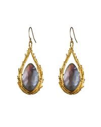 Alexis Bittar Gray Maldivian Feathered Drop Earring With Iolite Doublet