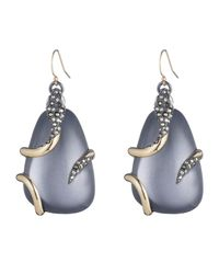 Alexis Bittar - Blue Snake Wrapped Lucite Drop Wire Earring You Might Also Like - Lyst