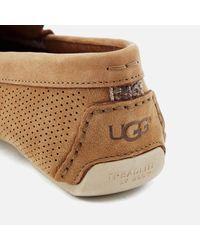 Ugg Brown Henrick Stripe Perf Driver Shoes for men