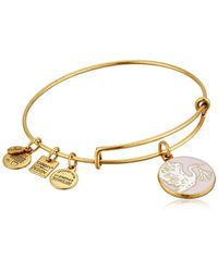 ALEX AND ANI Metallic Charity By Design Special Delivery Bangle Bracelet