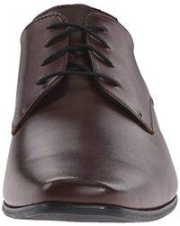 Calvin Klein Brown Broadie Oxford Shoe for men