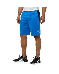 PUMA Blue Motion Flex Short for men
