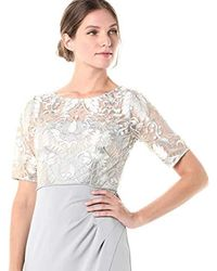 Adrianna Papell Metallic Embroidered Long Gown