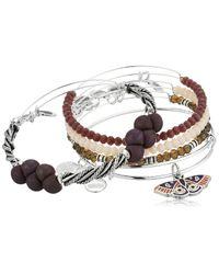ALEX AND ANI Metallic S Moth Bracelet Set Of 5