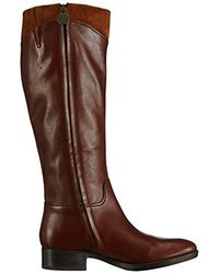 Geox Brown Felicity Tall Boot