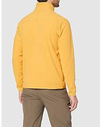 100 Glacier 1/4 Zip di The North Face in Multicolor da Uomo