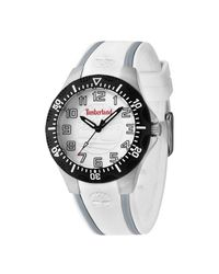 Timberland Metallic Tbl14323mstb04 S Quartz Watch