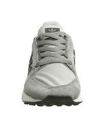 Forest Grove, Chaussures de Fitness Homme Adidas pour homme en coloris Multicolor