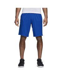 Adidas Blue 4krft Sho Prime Shorts for men