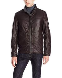 Tahari Brown Classic Stand Collar Faux Leather Jacket for men