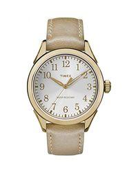 Timex Metallic Briarwood Watch