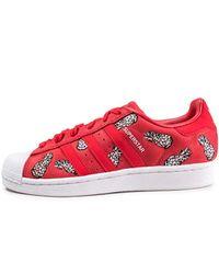 Superstar W, Chaussures de Fitness Femme Adidas en coloris Multicolor