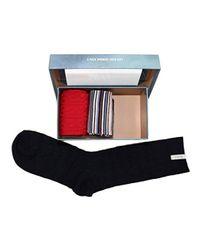 Pepe Jeans Multicolor CANDICE 3er-Pack multi GR: 37-41