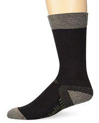 Columbia Natural Cotton Crew Sock for men