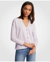 Ann Taylor Purple Relaxed V-neck Cardigan