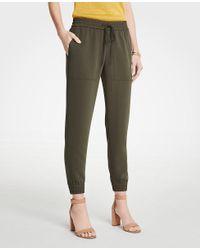 Ann Taylor Green Jogger Pants