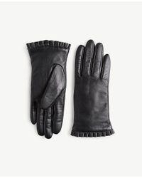 Ann Taylor - Black Leather Gloves - Lyst