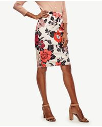 Ann Taylor - Orange Curvy Sundrenched Floral Pencil Skirt - Lyst