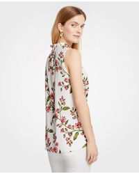 Ann Taylor White Petite Floral Corded Ruffle Neck Shell