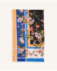 Ann Taylor Multicolor Butterfly Scarf