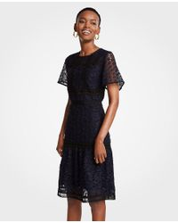 Ann Taylor Black Petite Mixed Lace Flare Dress