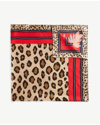 Ann Taylor - Multicolor Cheetah Silk Little Scarf - Lyst