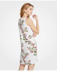 Ann Taylor White Tall Floral Sleeveless Shift Dress