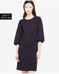 Ann Taylor - Black Puff Sleeve Knit Dress - Lyst