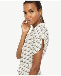 Ann Taylor White Stripe Short Sleeve Belted Shirtdress