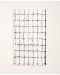 Ann Taylor White Double Windowpane Blanket Scarf