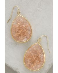 Anthropologie | Natural Tartini Drops | Lyst