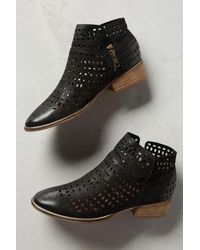 Seychelles   Black Tame Ankle Boots   Lyst