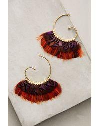 Gas Bijoux | Red Rouge Feather Hoop Earrings | Lyst