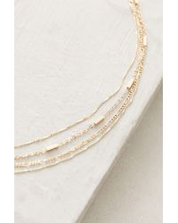 Serefina | Metallic Dauphine Choker Necklace | Lyst