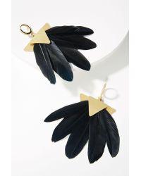 Katerina Psoma - Black Artemis Feather Drop Earrings - Lyst