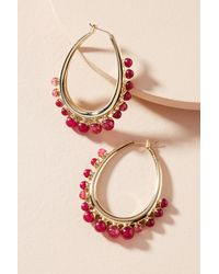 Anton Heunis - Pink Thea Hoop Earrings - Lyst