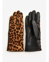 Ashley Stewart Brown Faux Suede Leopard Gloves