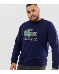 Lacoste Sweater Met Groot Logo En Ronde Hals In Marineblauw in het Blue voor heren