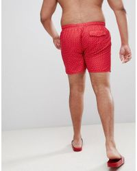 French Connection Red Plus Dot Swim Shorts for men