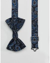 ASOS   Blue Bow Tie In Paisley Design for Men   Lyst