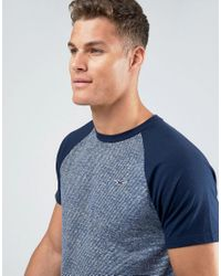 Hollister T-shirt Slim Fit Baseball Raglan In Blue for men